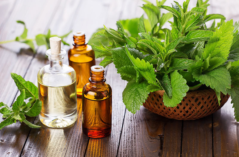 Aromatherapy oils and their benefits